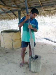Le guarana est alors pilé avec un peu d'eau dans un mortier.
