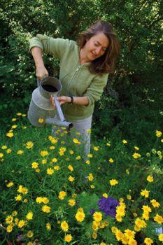 Les 4 saisons du jardin bio entretien marie arnould for 4 saisons du jardin bio