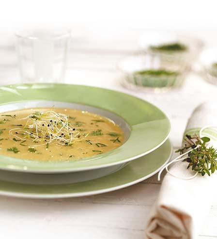 Graine-Soupe