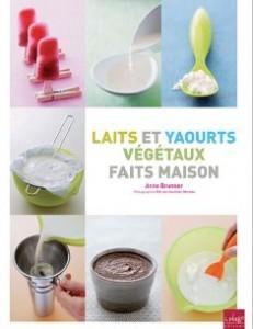 Laits-et-yaourts-faits-maison