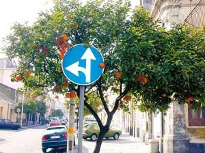 Oranger-Panneau