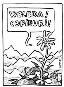 edelweiss3