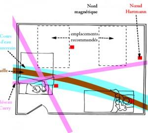 geobiologie11