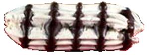 meringuechocolat