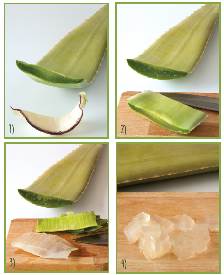 extraction-aloe-vera