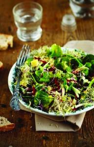 saladeenergie1